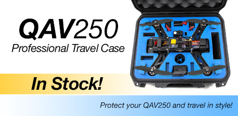 QAV250 Travel Case