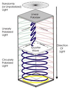 How Circular Polarization Works